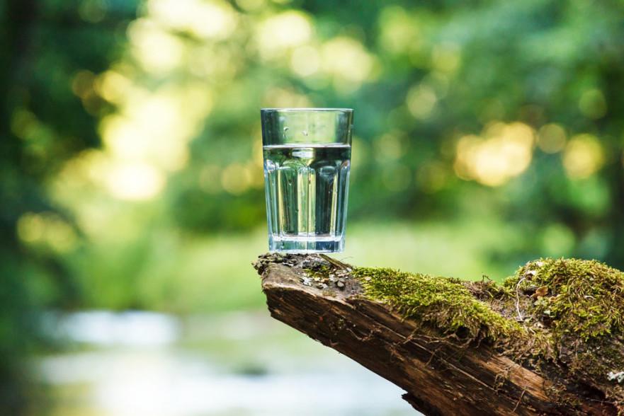 Hidratación y cerebro