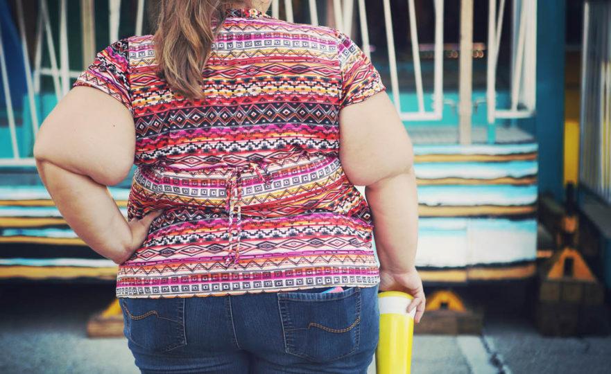 obesidad y cerebro