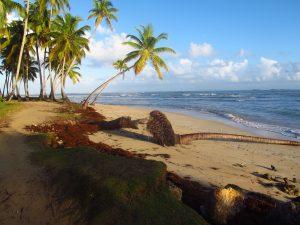 terapia de estrés y agua de mar